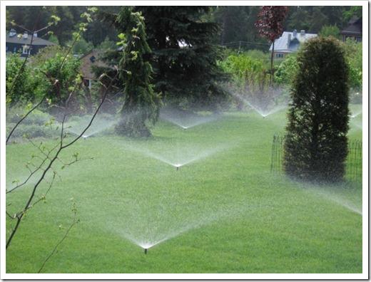 Выбор количества дождевателей и объём полива газона